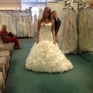 Vera Wang for David's Bridal Wedding dress.